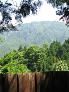 Onsen View
